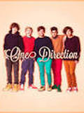 1D( Including: Liam Payne, Zayn Malik, Louis Tomilsion,Niall Horan,and Harry Styles)